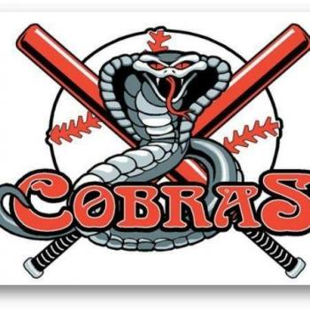 Dragon Wings Cobras Baseball Club