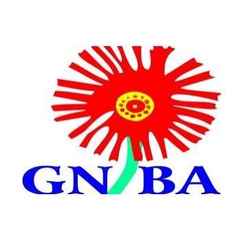 Gauteng North Baseball Association