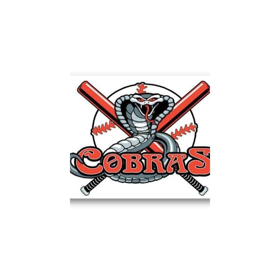 Dragon Wings Cobras Baseball.jpg
