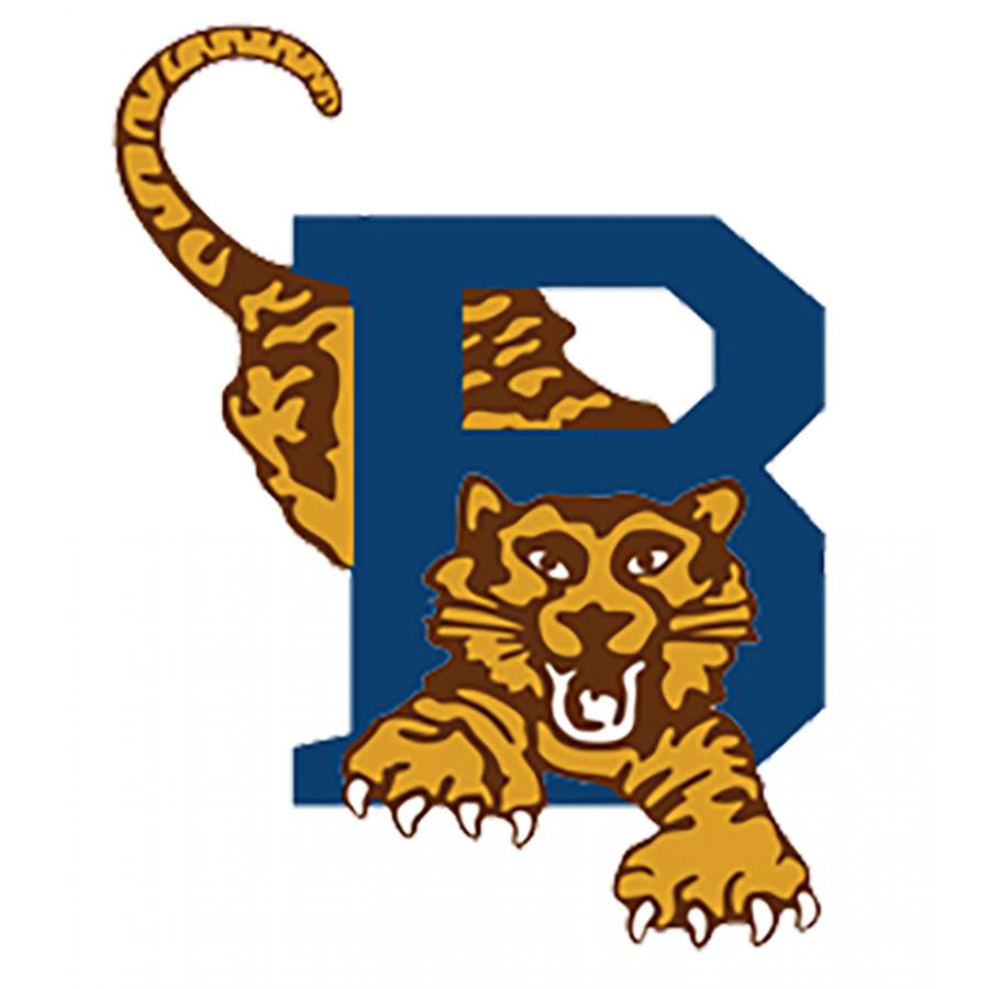 Bellville Tygers Baseball club logo.png