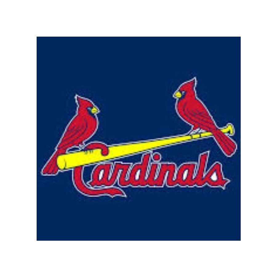 Boksburg Cardinals.jpg